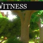 Das Versteckspiel hat ein Ende: The Witness mit 10 Minuten Gameplay